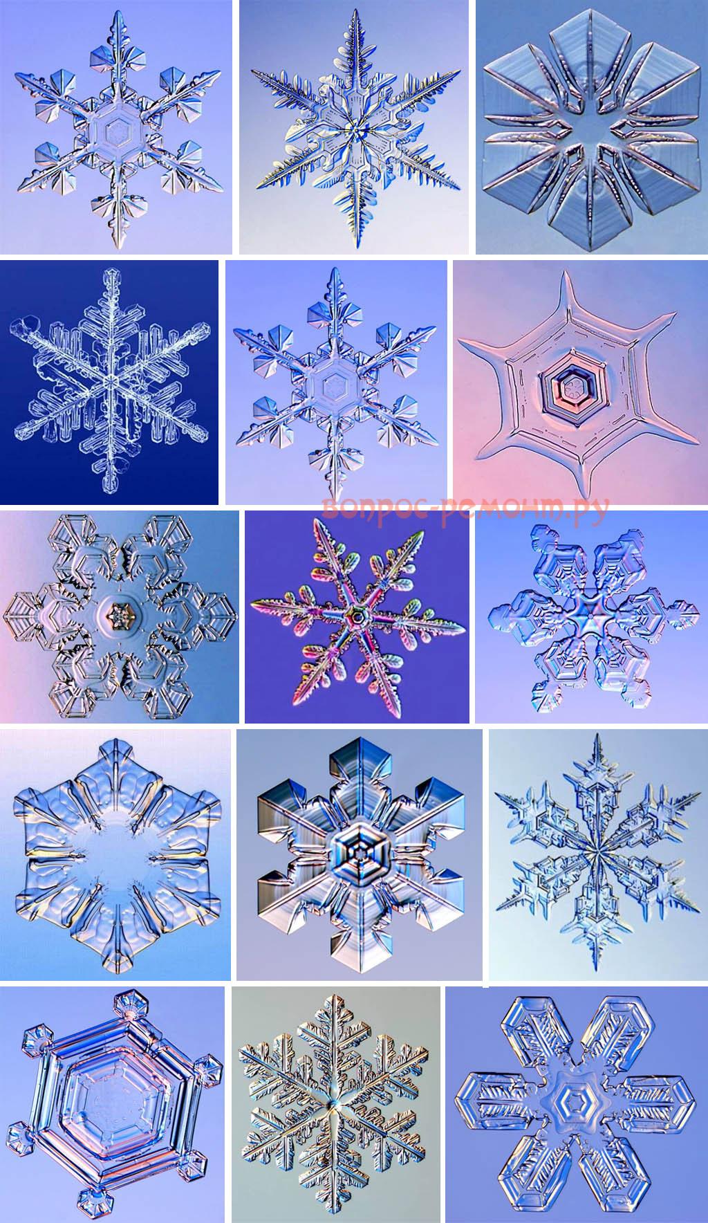 Микрофотографии снежинок