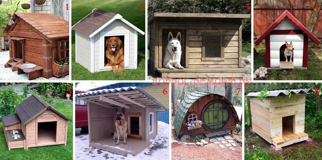 Виды собачьих будок