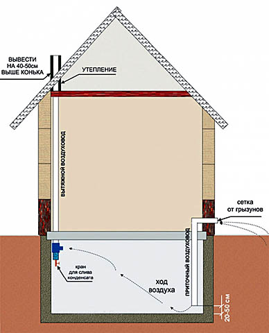 Схема вентиляции погреба под домом
