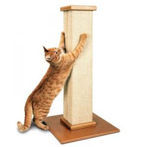 Как сделать когтеточку для кошки своими руками: мастер-класс 95
