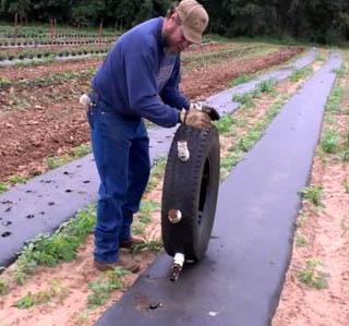 Как сделать отверстия для рассады в пленке на грунте