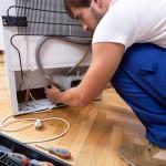 Ремонт и устройство холодильника: принципы работы разных видов, типичные неисправности, компоненты