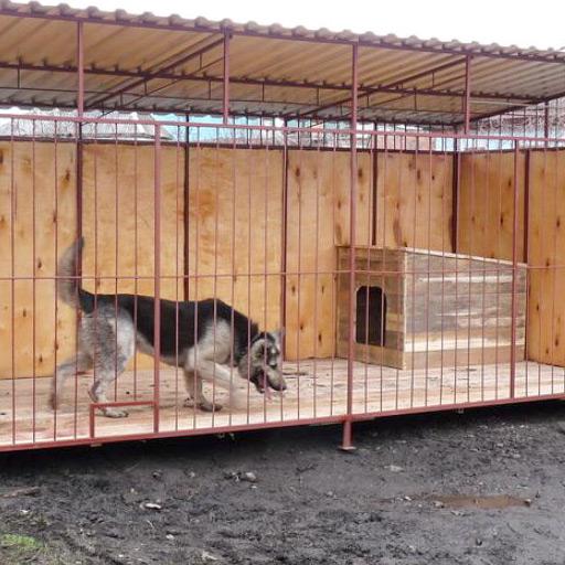 Строим вольер для собаки своими руками фото 424