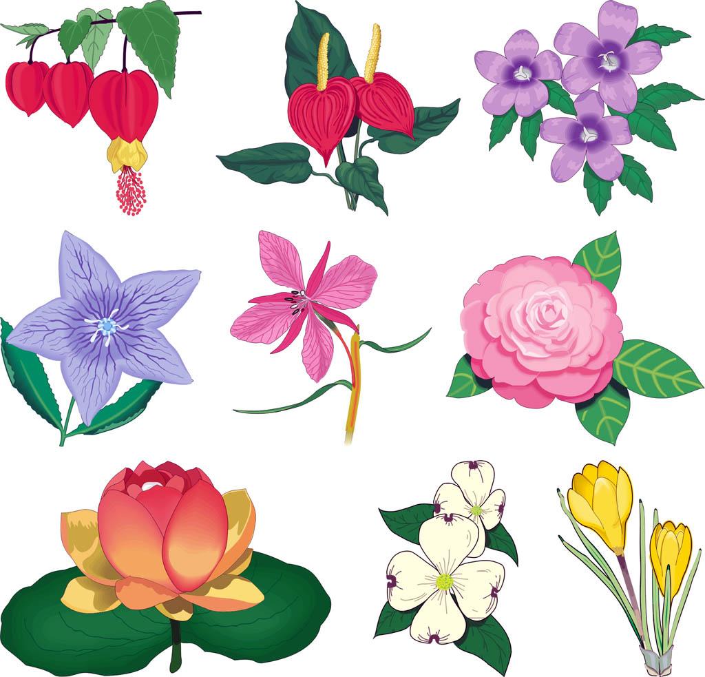 Эскизы цветов для рисунков на стенах