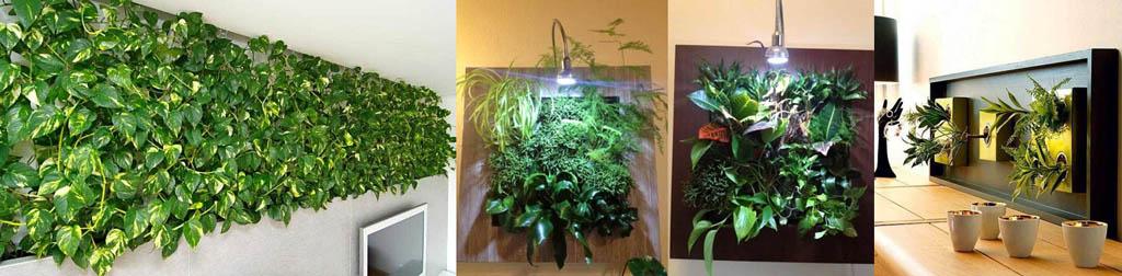 Декор стен растениями