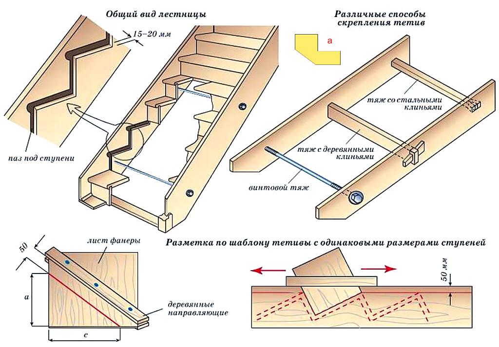 Конструкция деревянной лестницы в тетивах