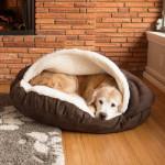 Лежанки для собак: самодельные варианты для маленьких и больших, на все случаи жизни