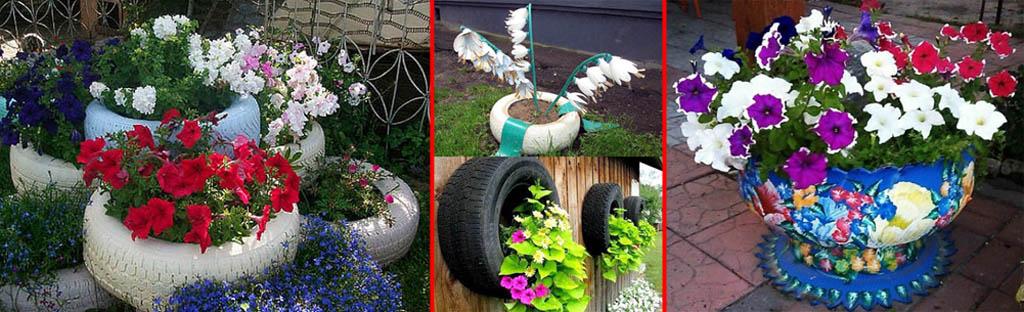 Примеры правильного и направильного дизайна клумб из шины