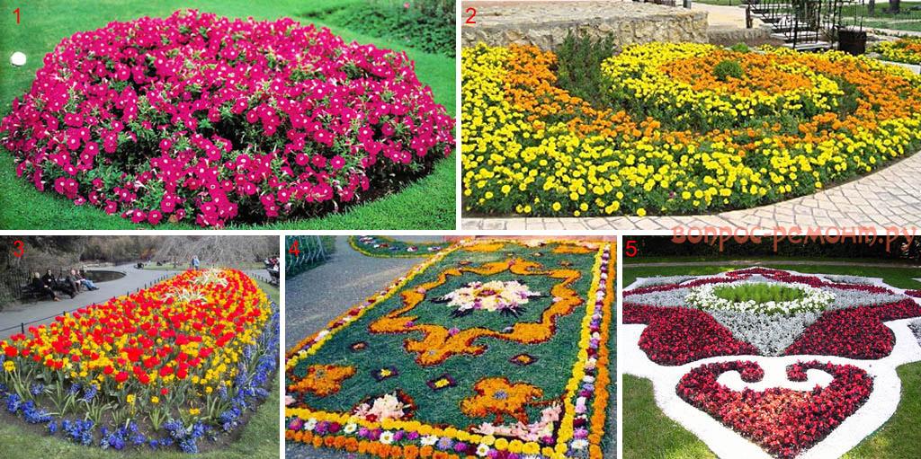 Способы заполнения клумб цветами