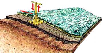 Разбивка газона на склоне