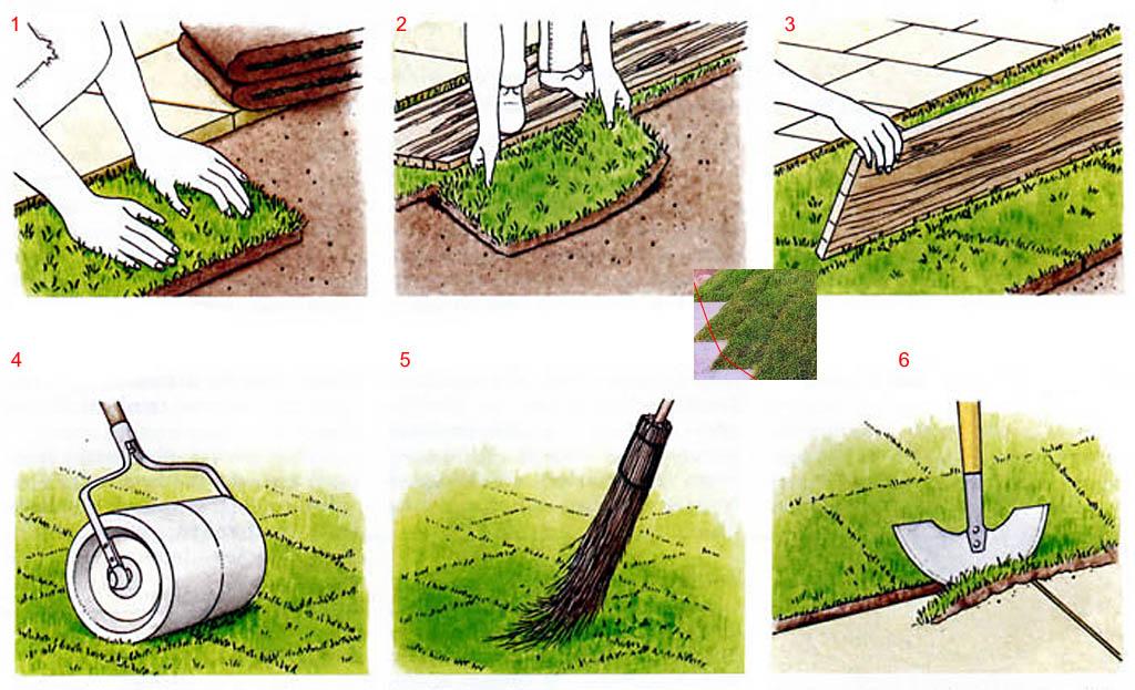 Укладка (посадка) рулонного газона