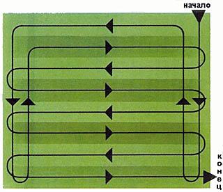 Схема первичной стрижки газона