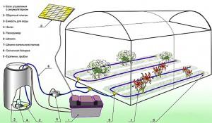 Устройство энергонезависимой теплицы с капельным поливом