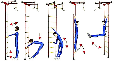 Просмейшие упражнения на шведской стенке