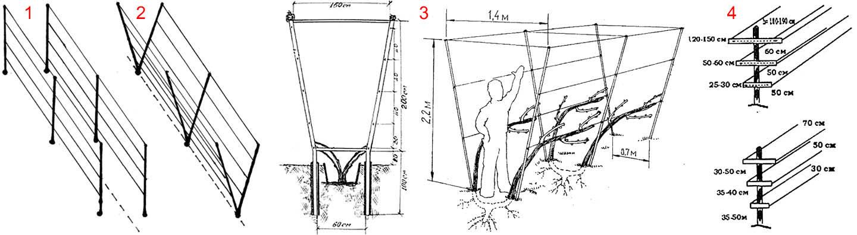 Конструкции и размеры двухплоскостных шпалер для винограда