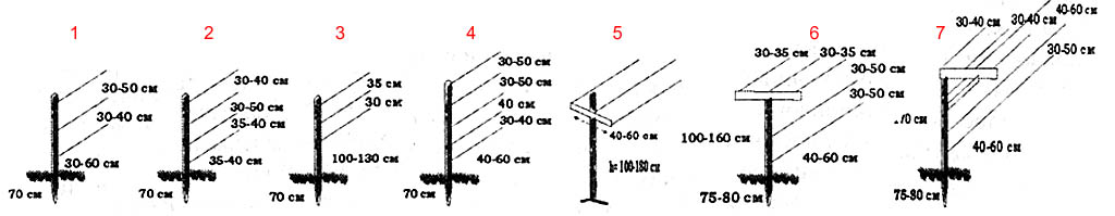 Размеры и расположение проволок на вертикальных одноплоскостных шпалерах для винограда.