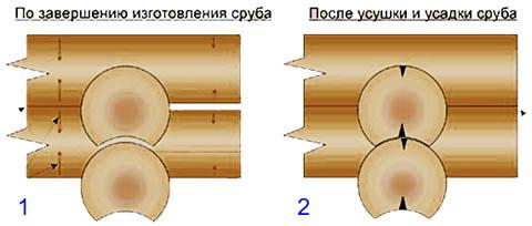 Сборка сруба из бревен с избыточным зазором в расчете на усадку