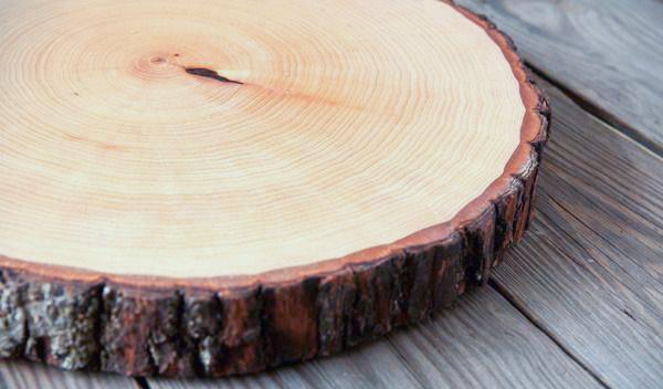 Спил дерева, пригодный для изготовления разделочной доски